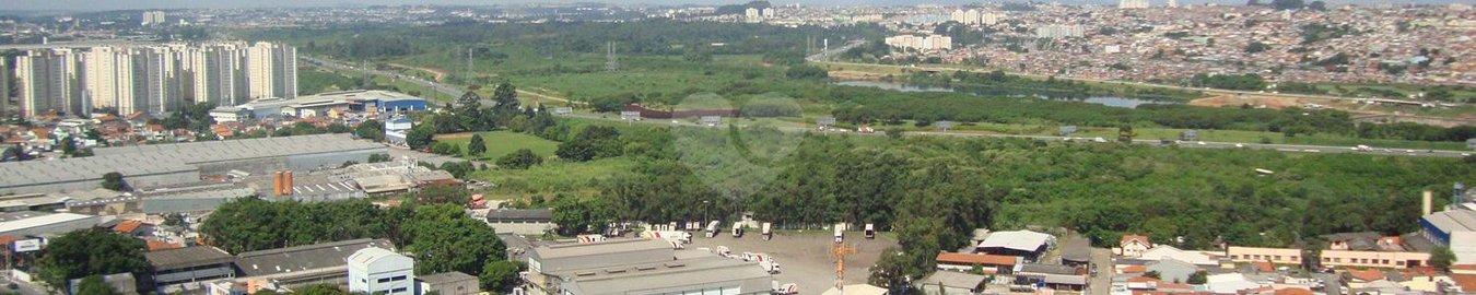 Monte Carmelo Guarulhos Ponte Grande REM14455 11