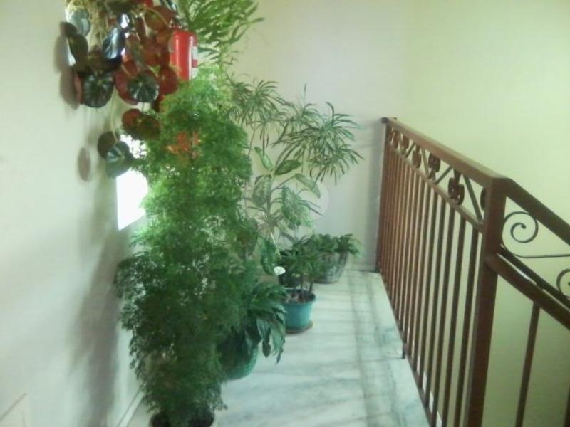 Venda Apartamento Belo Horizonte Santa Efigênia REO106657 2