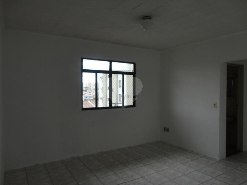 Aluguel Apartamento Americana Conserva REO164385 1