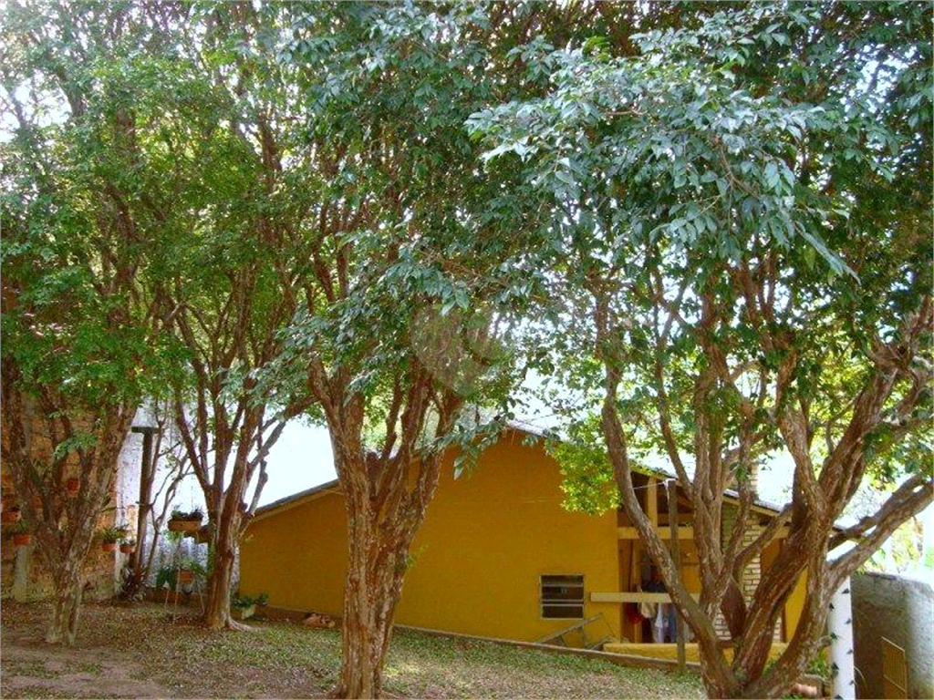 Venda Casa térrea São Paulo Vila Albertina REO181627 31