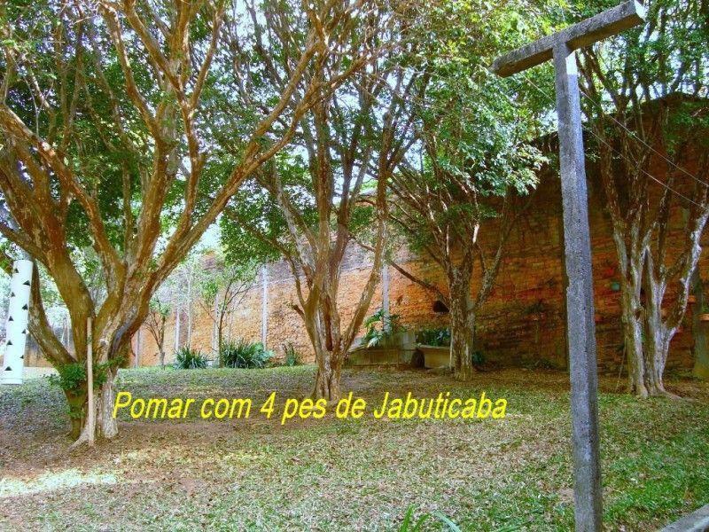 Venda Casa térrea São Paulo Vila Albertina REO181627 7