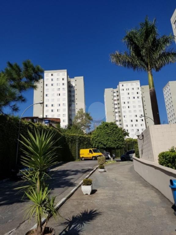 Venda Apartamento São Paulo Jardim Maristela REO254961 29