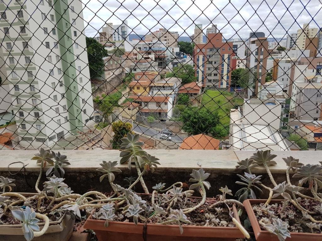 Venda Apartamento Belo Horizonte Sagrada Família REO265310 15