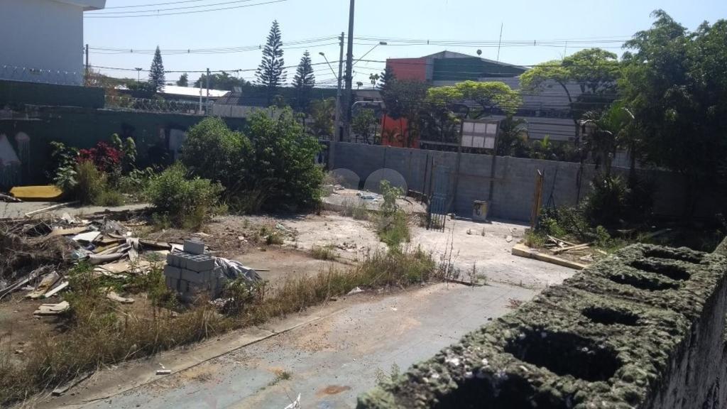 Venda Terreno São Paulo Jaçanã REO267415 6
