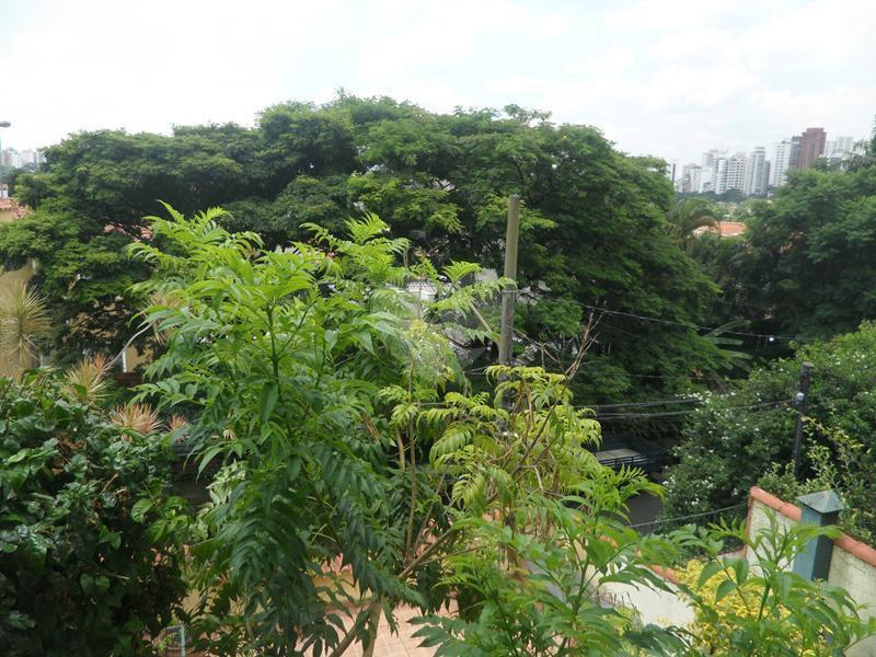 Venda Casa São Paulo Pacaembu REO281563 26
