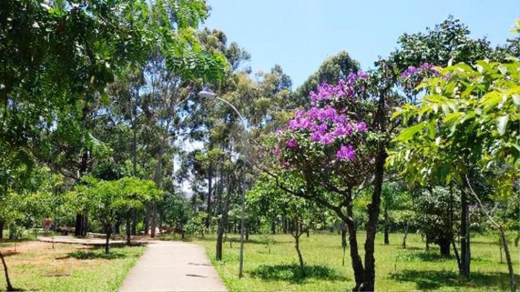 Venda Terreno São Paulo Vila São Nicolau REO281603 16