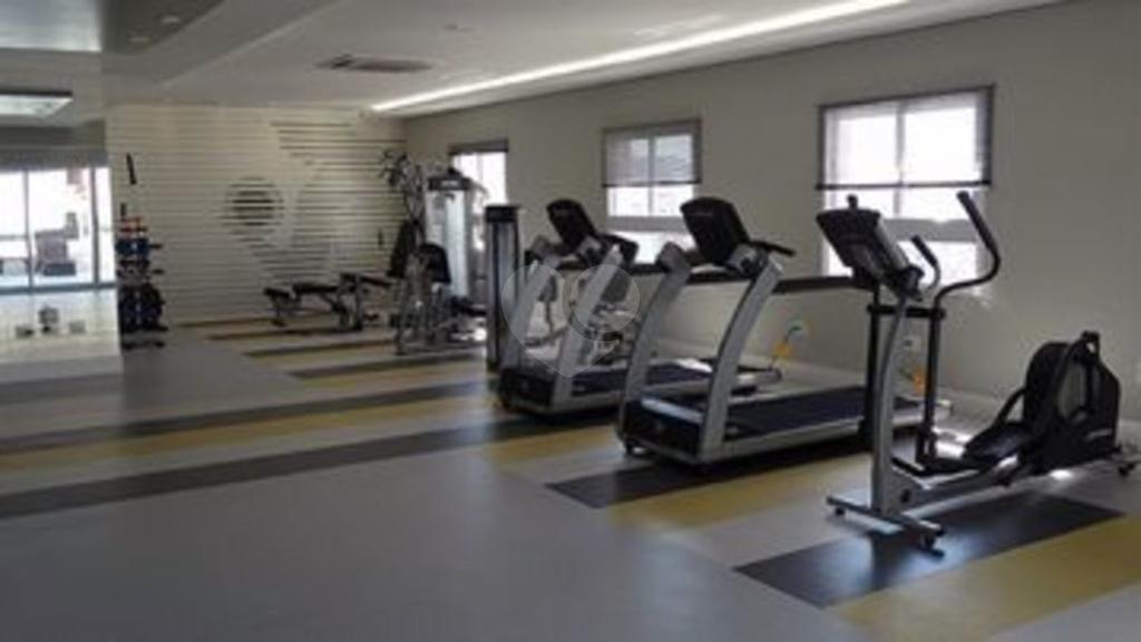 Aluguel Apartamento Santos Gonzaga REO302655 17