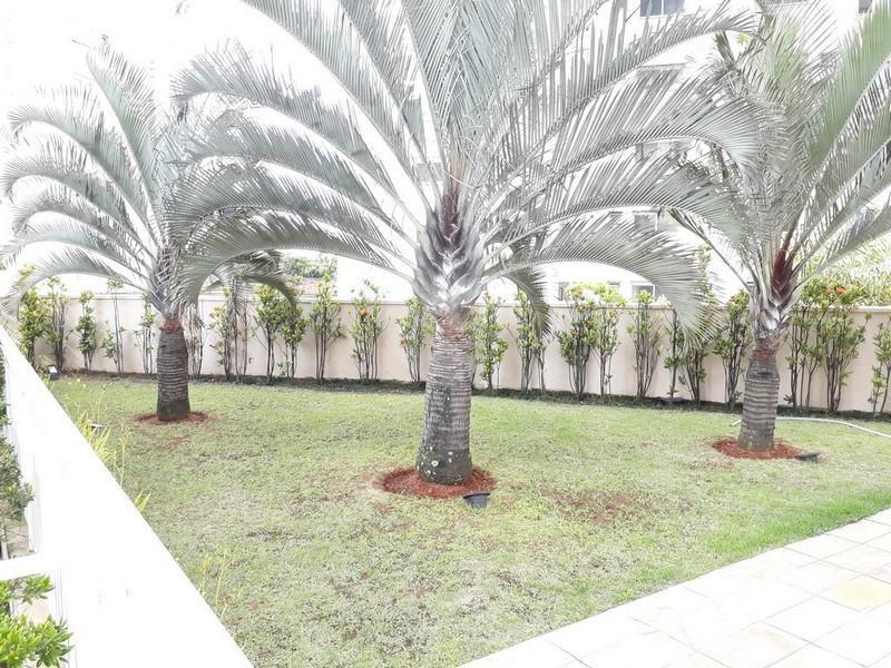 Venda Apartamento São Paulo Água Branca REO303773 31