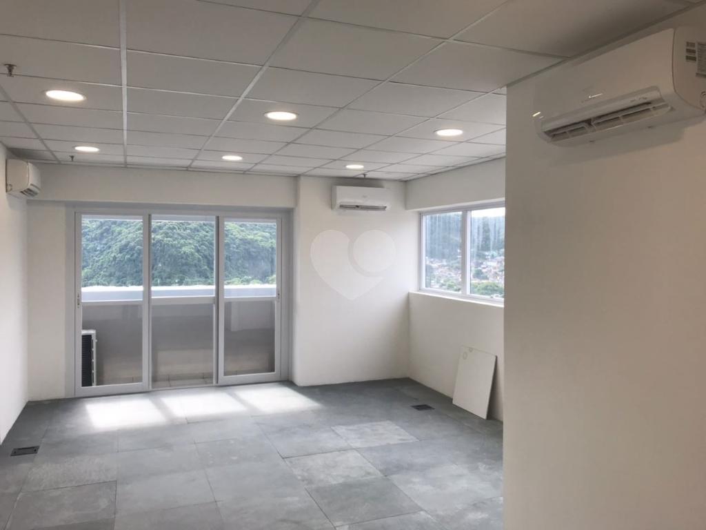 Aluguel Salas Santos Vila Belmiro REO304638 20