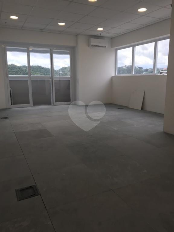 Aluguel Salas Santos Vila Belmiro REO304638 6