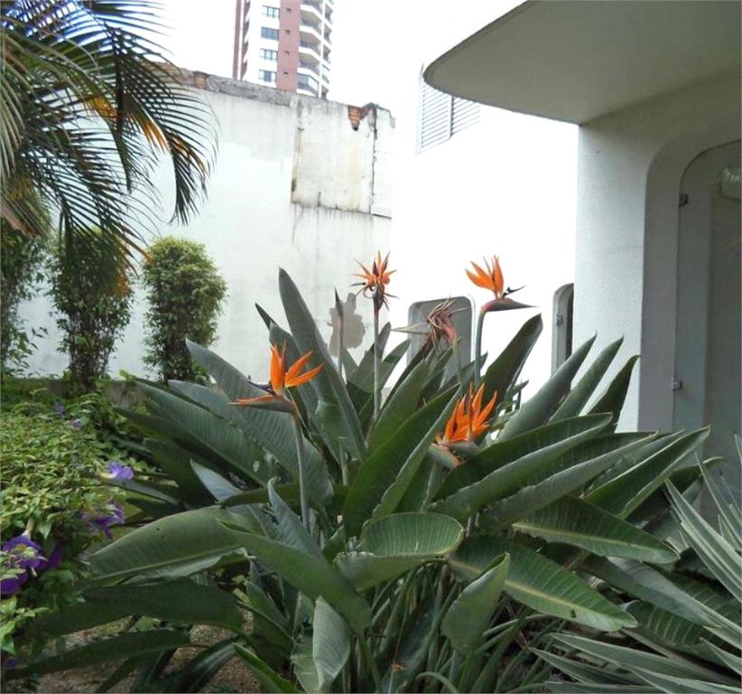 Venda Apartamento São Paulo Pinheiros REO307511 48