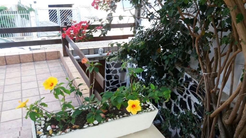 Venda Casa Salvador Jardim Apipema REO317667 18