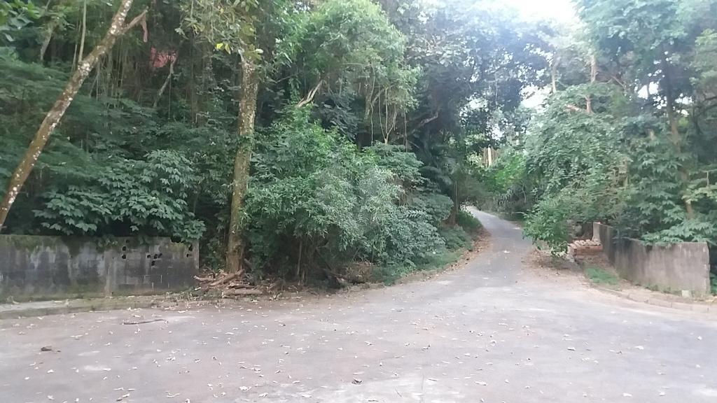Venda Terreno São Paulo Tucuruvi REO323981 30