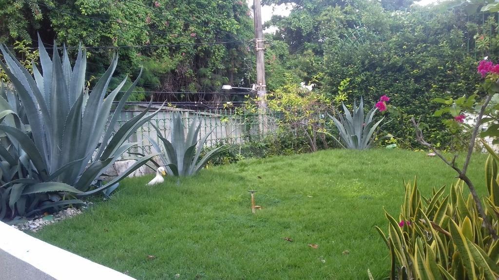 Venda Casa Salvador Rio Vermelho REO329866 35