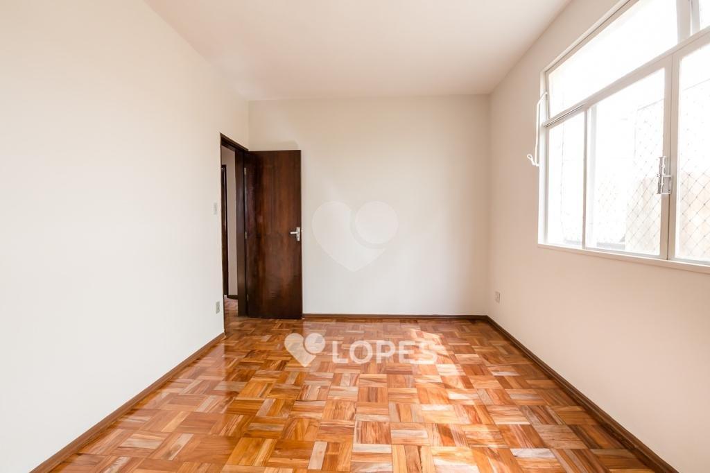 Aluguel Apartamento Belo Horizonte Carlos Prates REO341721 15