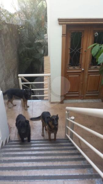 Venda Casa Belo Horizonte Saudade REO3564 12