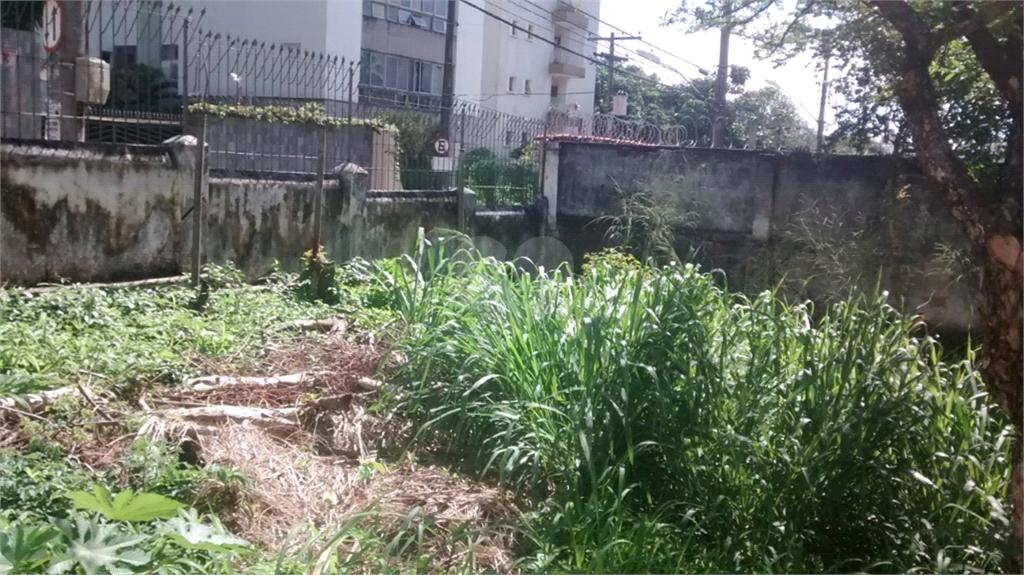 Venda Casa Salvador Acupe De Brotas REO455584 15