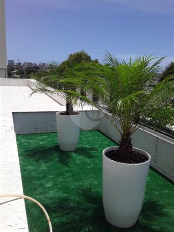 Venda Apartamento Salvador Horto Florestal REO480740 10