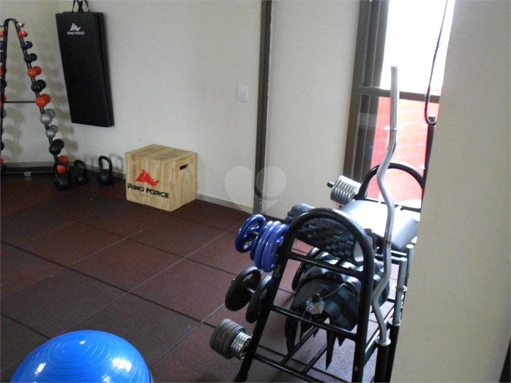 Aluguel Apartamento Campinas Cambuí REO481587 28