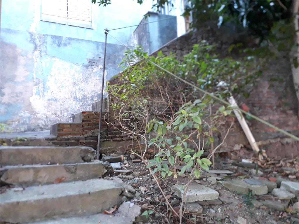 Venda Casa São Paulo Vila Isolina Mazzei REO496743 18