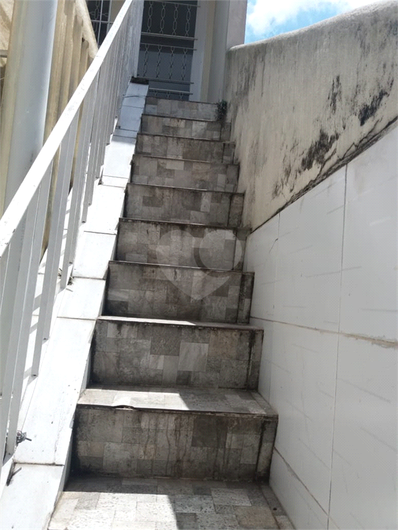 Aluguel Casa São Paulo Sumarezinho REO507950 13