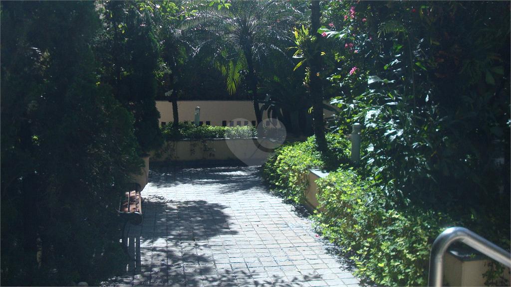 Aluguel Apartamento São Paulo Paraíso REO514053 25