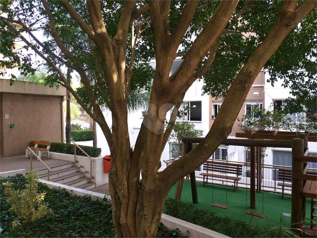 Venda Apartamento Porto Alegre Santa Tereza REO514198 7