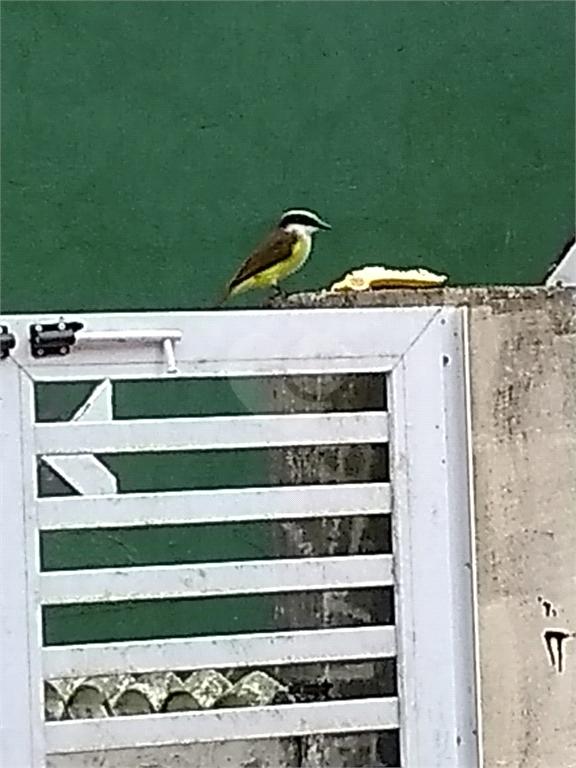 Venda Casa Santos Morro Nova Cintra REO570257 23