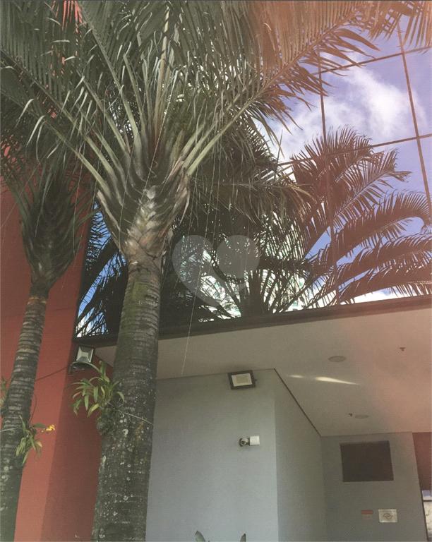 Aluguel Salas São Paulo Pinheiros REO577088 5