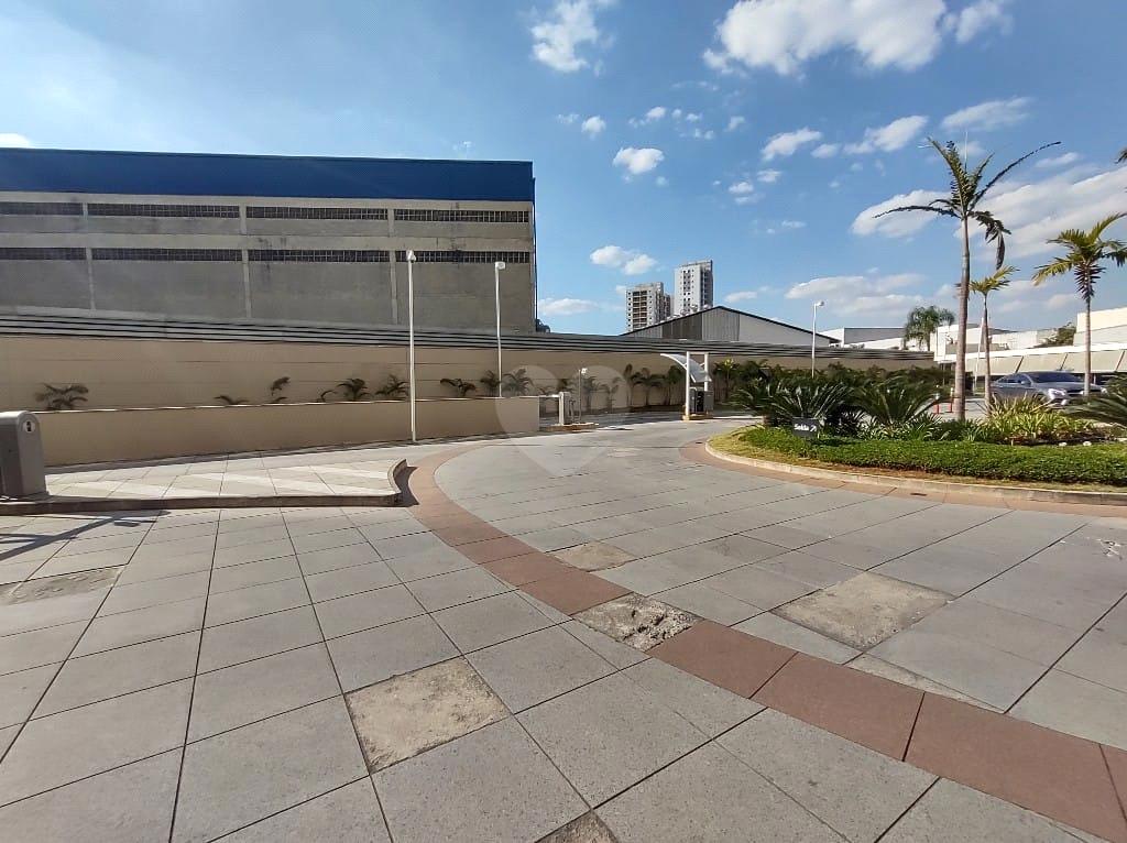 Aluguel Salas São Paulo Várzea Da Barra Funda REO580770 42