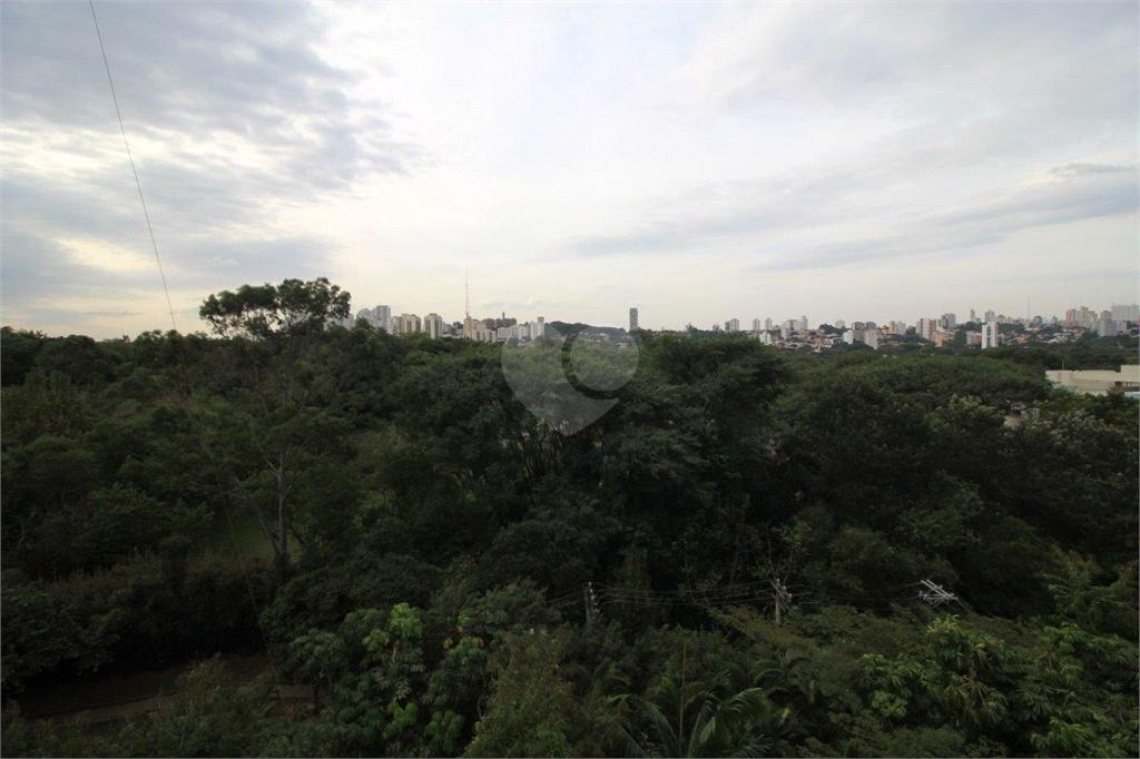 Venda Apartamento São Paulo Alto De Pinheiros REO62527 22