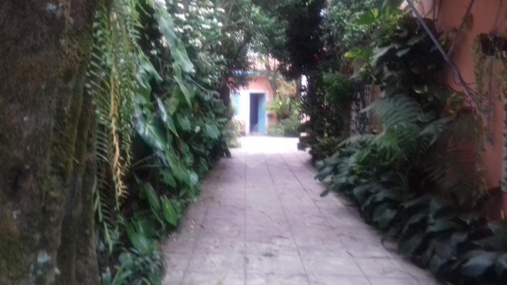 Venda Casa São Paulo Cidade Jardim REO88662 18