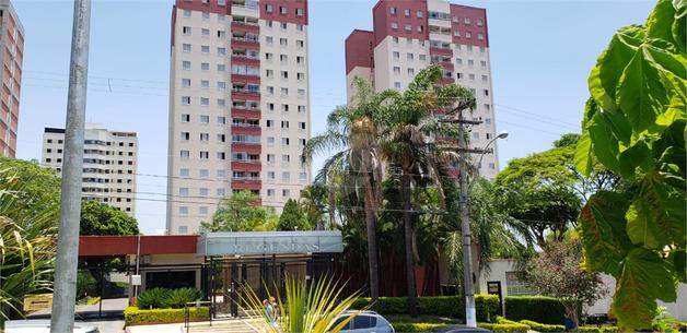 Venda Apartamento Campinas Vila Marieta REO 12