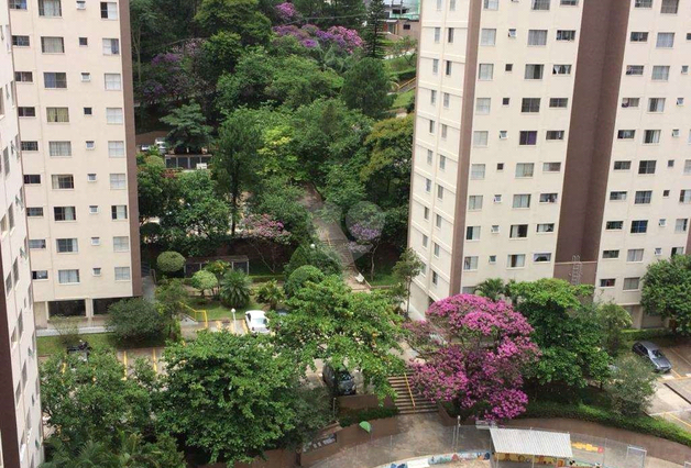 Aluguel Apartamento São Paulo Jardim Peri REO 18